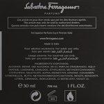 Salvatore Ferragamo F Ferragamo Black By Salvatore Ferragamo For Men Eau De Toilette Spray, 3.4-Ounce / 100 Ml (Pack of 2)